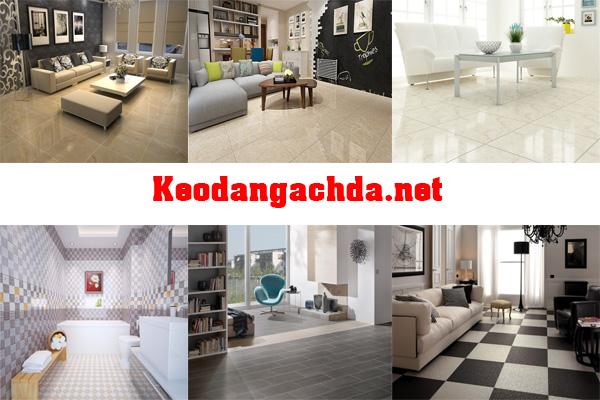 Huong-dan-tu-van-cach-chon-keo-dan-gach-da-weber-tot-nhat-1
