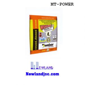keo-dan-gach-weber.color-MT-power